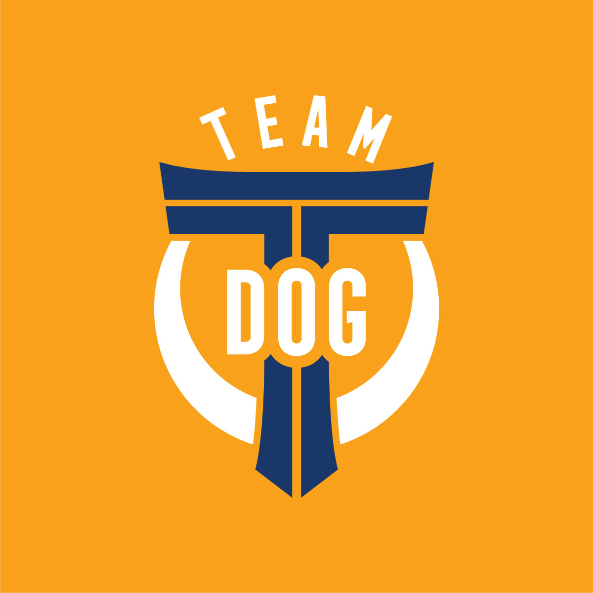 Team T-Dog, Tsuneari Yahiro, Logo Blue-White